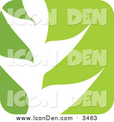 Clip Art of a Green and White Gradient Nature Leaf Icon by Elena