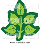Clip Art of a Green Leaf Icon by Vector Tradition SM