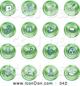 Clip Art of a Set of Green Icons of Medicine, Science, and Biology by AtStockIllustration